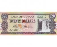 Billete Guyana 20 Dolares 2009 Cataratas Kaieteur - Numisfila