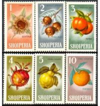 Set de 6 Estampillas Albania 1965 - Numisfila