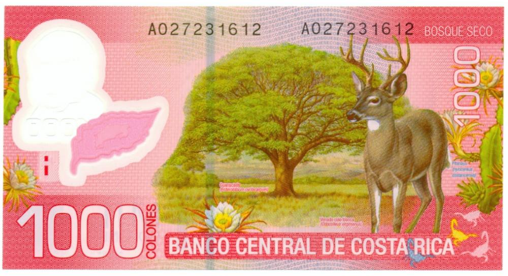 Billete Plástico Costa Rica 1000 Colones 2009  - Numisfila
